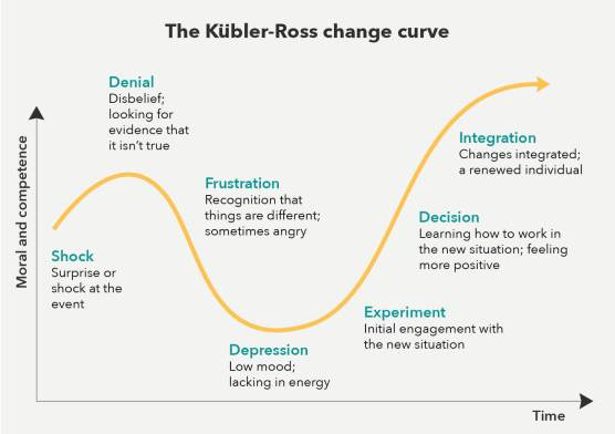 ISNSloss-curve