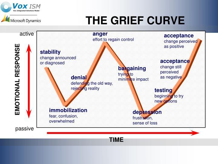 ISNSthe-grief-curve-n